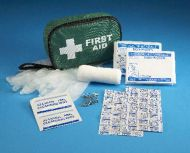 Mini First Aid Kit in Pouch